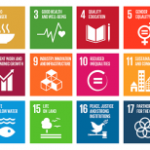 The Sustainable Development Goals: A Plan for 2016 and Beyond