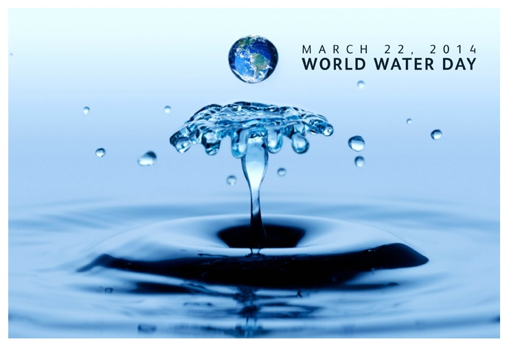 World water day essay