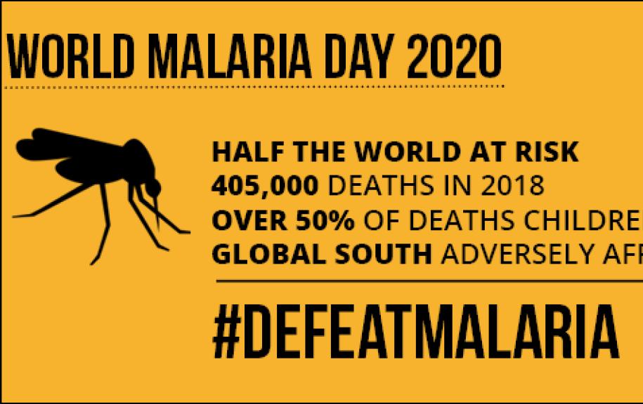 World Malaria Day infographic