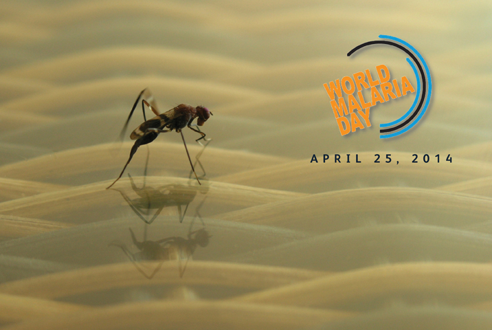 malaria_slide